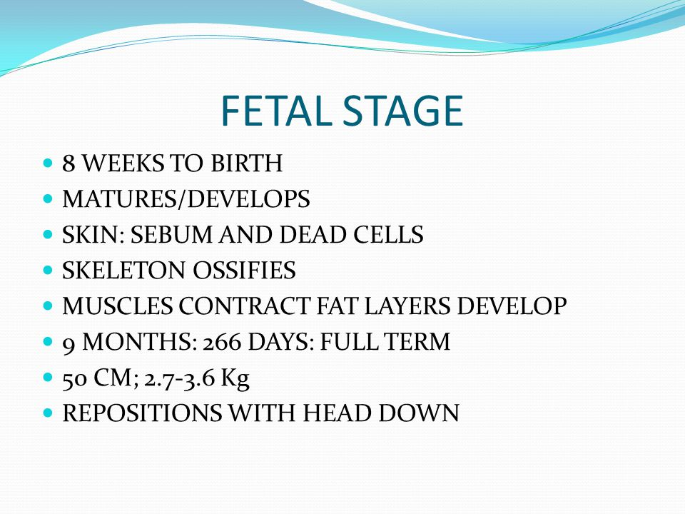 FETAL STAGE 8 WEEKS TO BIRTH MATURES/DEVELOPS SKIN: SEBUM AND DEAD CELLS SKELETON OSSIFIES MUSCLES CONTRACT FAT LAYERS DEVELOP 9 MONTHS: 266 DAYS: FUL