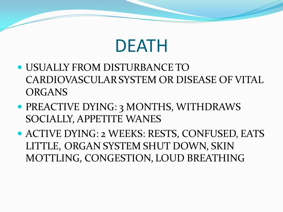 DEATH USUALLY FROM DISTURBANCE TO CARDIOVASCULAR SYSTEM OR DISEASE OF VITAL ORGANS PREACTIVE DYING: 3 MONTHS, WITHDRAWS SOCIALLY, APPETITE WANES ACTIV