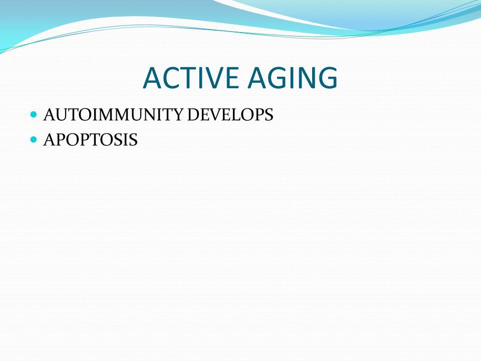 ACTIVE AGING AUTOIMMUNITY DEVELOPS APOPTOSIS