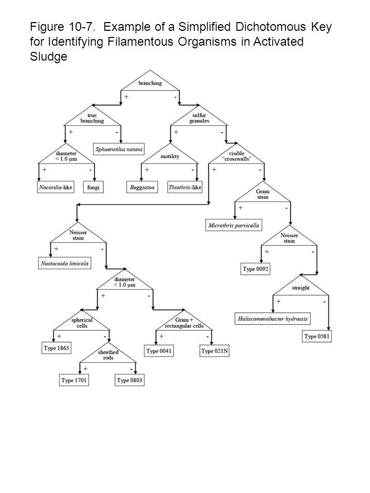 Figure 10 ‑ 18. Denaturing Gradient Gel Extraction (DGGE) Track Profiles