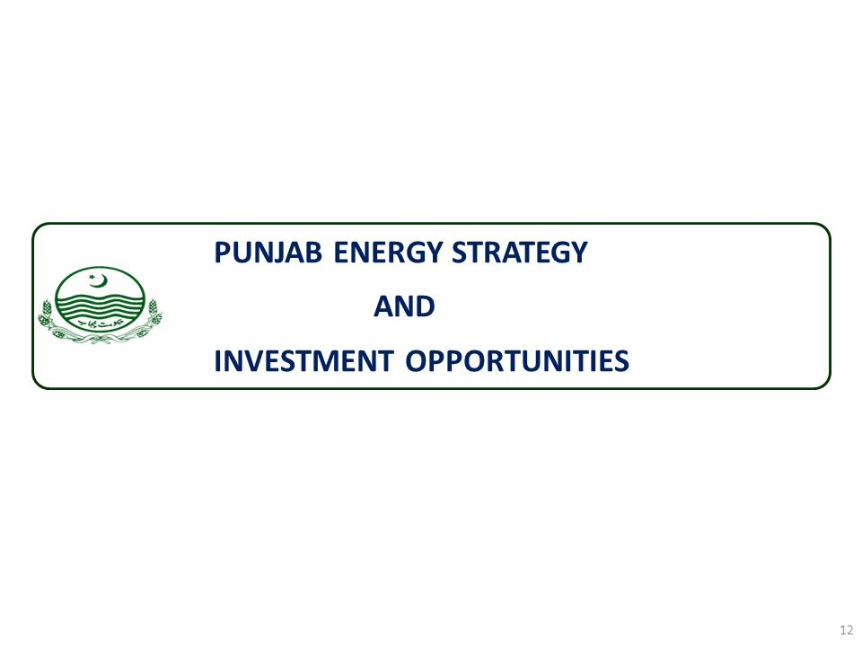 PUNJAB ENERGY STRATEGY AND INVESTMENT OPPORTUNITIES 12