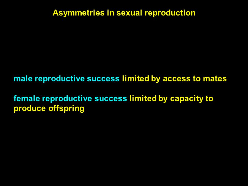 male reproductive success limited by access to mates female reproductive success limited by capacity to produce offspring Asymmetries in sexual reprod