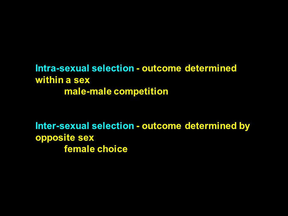 Intra-sexual selection - outcome determined within a sex male-male competition Inter-sexual selection - outcome determined by opposite sex female choi