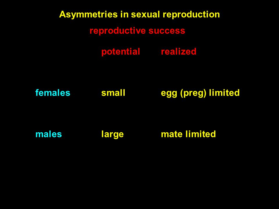 reproductive success potentialrealized femalessmallegg (preg) limited maleslargemate limited Asymmetries in sexual reproduction
