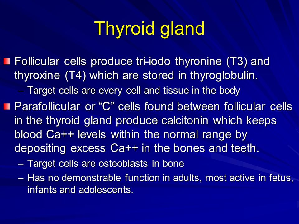 Thyroid gland Follicular cells produce tri-iodo thyronine (T3) and thyroxine (T4) which are stored in thyroglobulin. –Target cells are every cell and