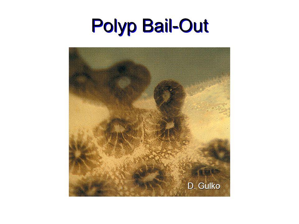 Polyp Bail-Out D. Gulko