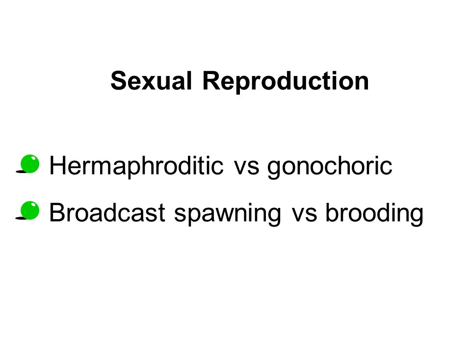 Sexual Reproduction Hermaphroditic vs gonochoric Broadcast spawning vs brooding