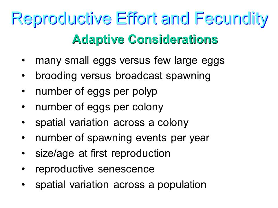 Reproductive Effort and Fecundity Adaptive Considerations many small eggs versus few large eggs brooding versus broadcast spawning number of eggs per polyp number of eggs per colony spatial variation across a colony number of spawning events per year size/age at first reproduction reproductive senescence spatial variation across a population