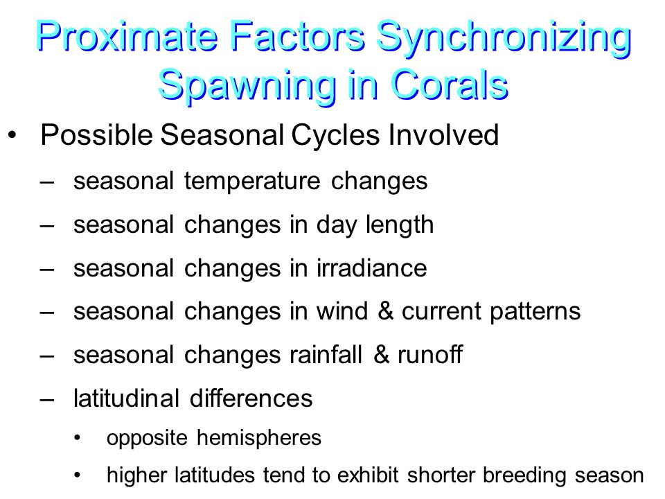 Proximate Factors Synchronizing Spawning in Corals Possible Seasonal Cycles Involved –seasonal temperature changes –seasonal changes in day length –seasonal changes in irradiance –seasonal changes in wind & current patterns –seasonal changes rainfall & runoff –latitudinal differences opposite hemispheres higher latitudes tend to exhibit shorter breeding season