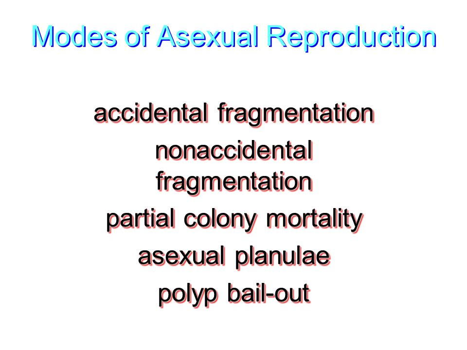 Modes of Asexual Reproduction accidental fragmentation nonaccidental fragmentation partial colony mortality asexual planulae polyp bail-out accidental fragmentation nonaccidental fragmentation partial colony mortality asexual planulae polyp bail-out