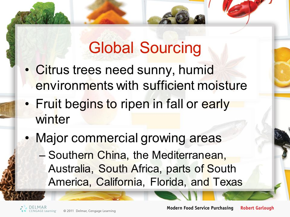 Global Sourcing Citrus trees need sunny, humid environments with sufficient moisture Fruit begins to ripen in fall or early winter Major commercial gr