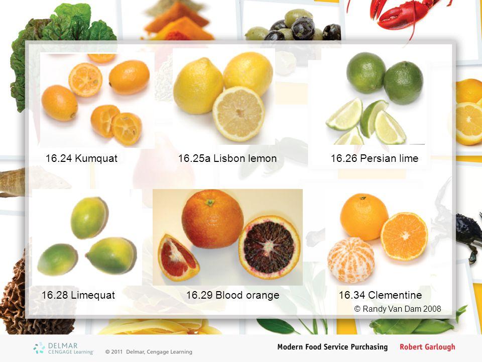 16.24 Kumquat16.25a Lisbon lemon16.26 Persian lime 16.29 Blood orange16.28 Limequat16.34 Clementine © Randy Van Dam 2008