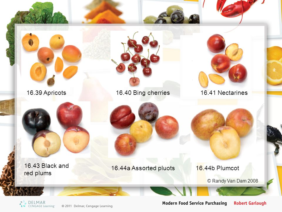 16.39 Apricots16.40 Bing cherries16.41 Nectarines 16.44a Assorted pluots 16.43 Black and red plums 16.44b Plumcot © Randy Van Dam 2008