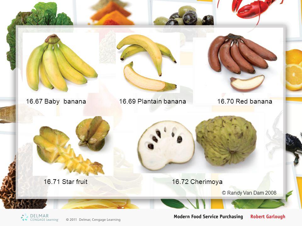 16.71 Star fruit16.72 Cherimoya 16.69 Plantain banana16.67 Baby banana16.70 Red banana © Randy Van Dam 2008