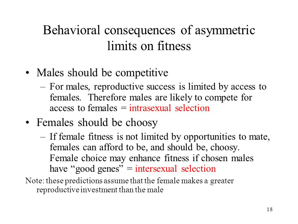 18 Behavioral consequences of asymmetric limits on fitness Males should be competitive –For males, reproductive success is limited by access to female