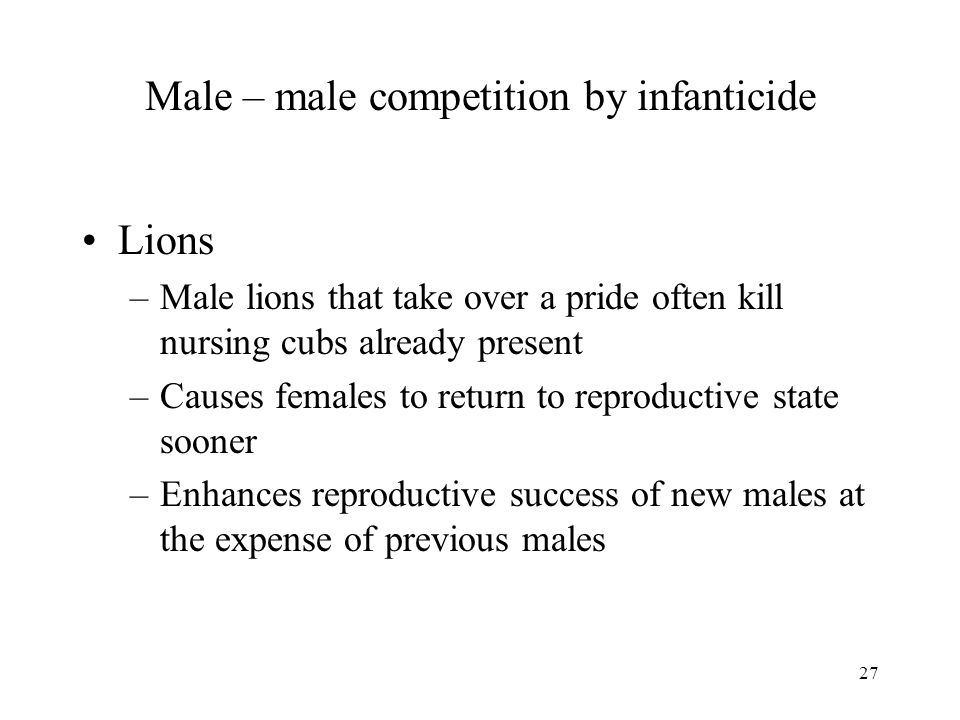 27 Male – male competition by infanticide Lions –Male lions that take over a pride often kill nursing cubs already present –Causes females to return t