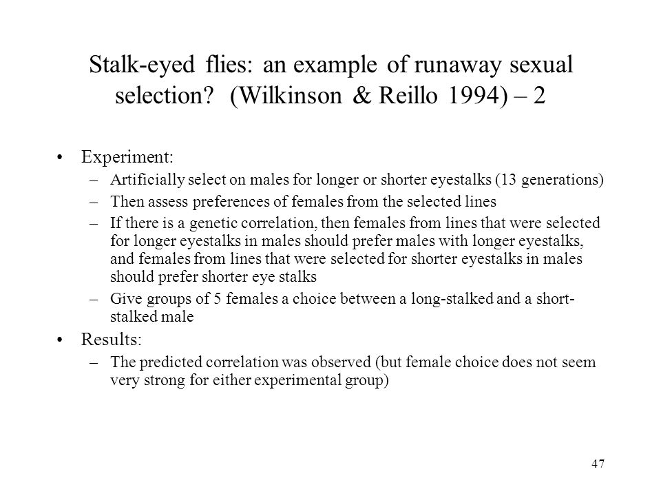 47 Stalk-eyed flies: an example of runaway sexual selection? (Wilkinson & Reillo 1994) – 2 Experiment: –Artificially select on males for longer or sho