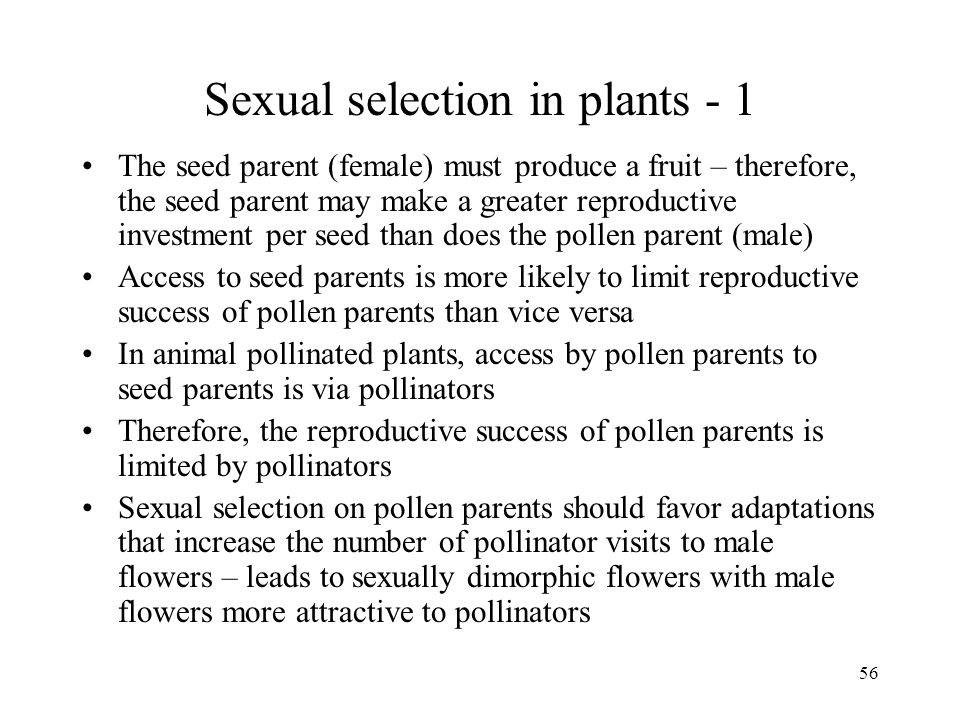 56 Sexual selection in plants - 1 The seed parent (female) must produce a fruit – therefore, the seed parent may make a greater reproductive investmen