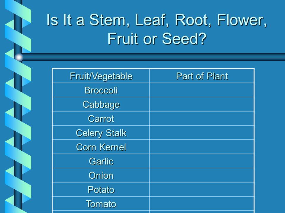Is It a Stem, Leaf, Root, Flower, Fruit or Seed.