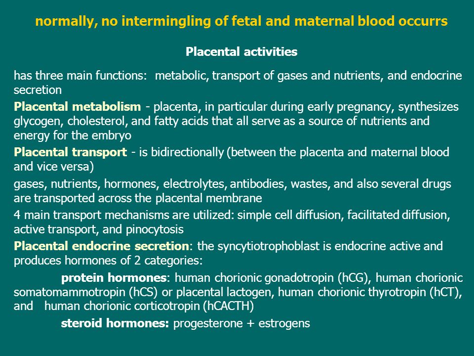 normally, no intermingling of fetal and maternal blood occurrs Placental activities has three main functions: metabolic, transport of gases and nutrie