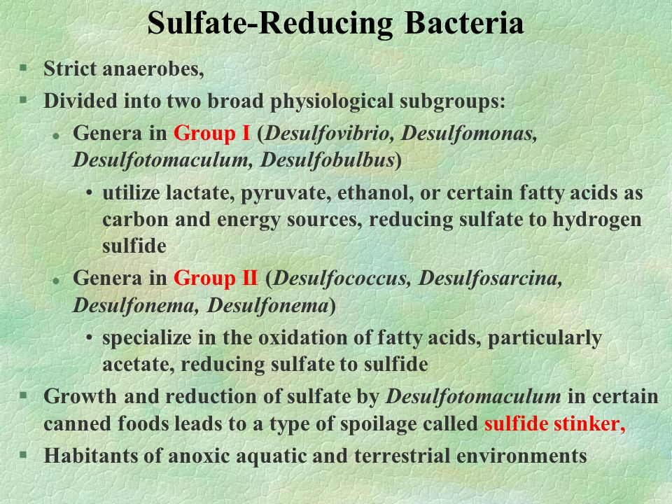 Sulfur-Reducing Bacteria §Able to reduce elemental sulfur to sulfide §Unable to reduce sulfate to sulfide §Obligate anaerobes §Utilize only sulfur as an electron acceptor §Also referred to as dissimilatory sulfur- reducing bacteria §Members of the genus Desulfuromonas can grow anaerobically by coupling the oxidation of substrates such as acetate to ethanol to the reduction of elemental sulfur to hydrogen sulfide