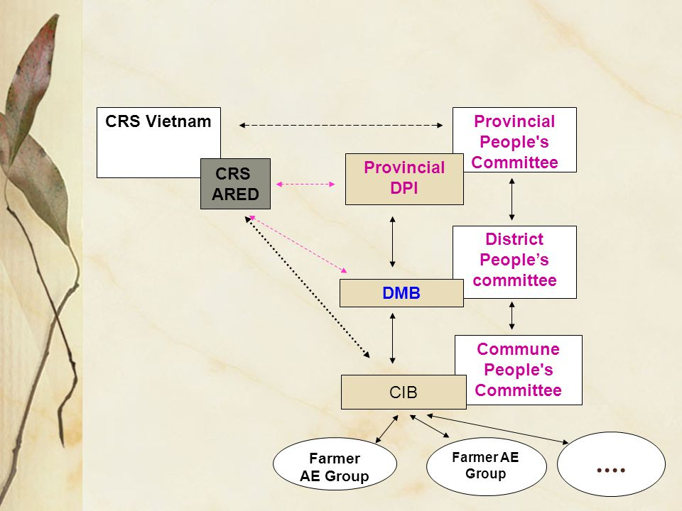 Provincial People s Committee CRS Vietnam Provincial DPI District People's committee Commune People s Committee DMB Farmer AE Group CRS ARED CIB....