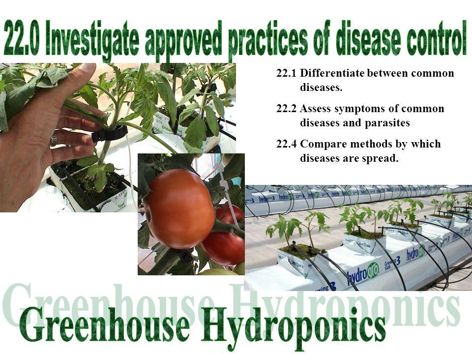 How do plant diseases spread.