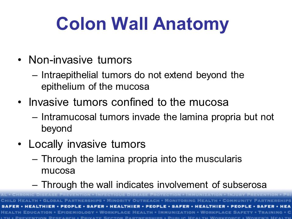 Colon Wall Anatomy Non-invasive tumors –Intraepithelial tumors do not extend beyond the epithelium of the mucosa Invasive tumors confined to the mucosa –Intramucosal tumors invade the lamina propria but not beyond Locally invasive tumors –Through the lamina propria into the muscularis mucosa –Through the wall indicates involvement of subserosa