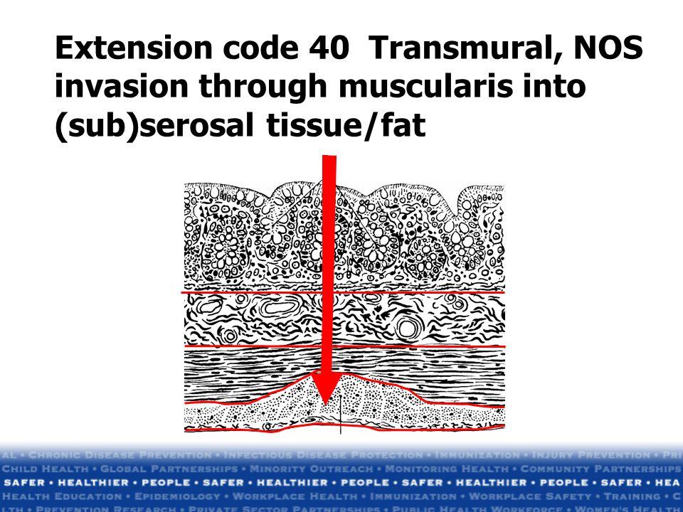 Extension code 40 Transmural, NOS invasion through muscularis into (sub)serosal tissue/fat