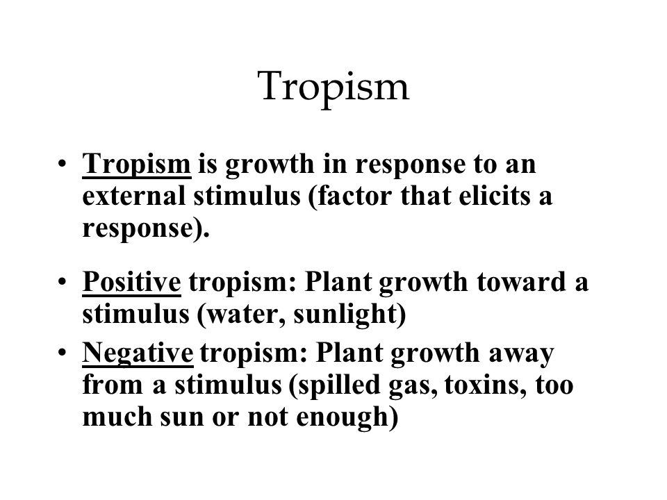 Tropism Tropism is growth in response to an external stimulus (factor that elicits a response). Positive tropism: Plant growth toward a stimulus (wate
