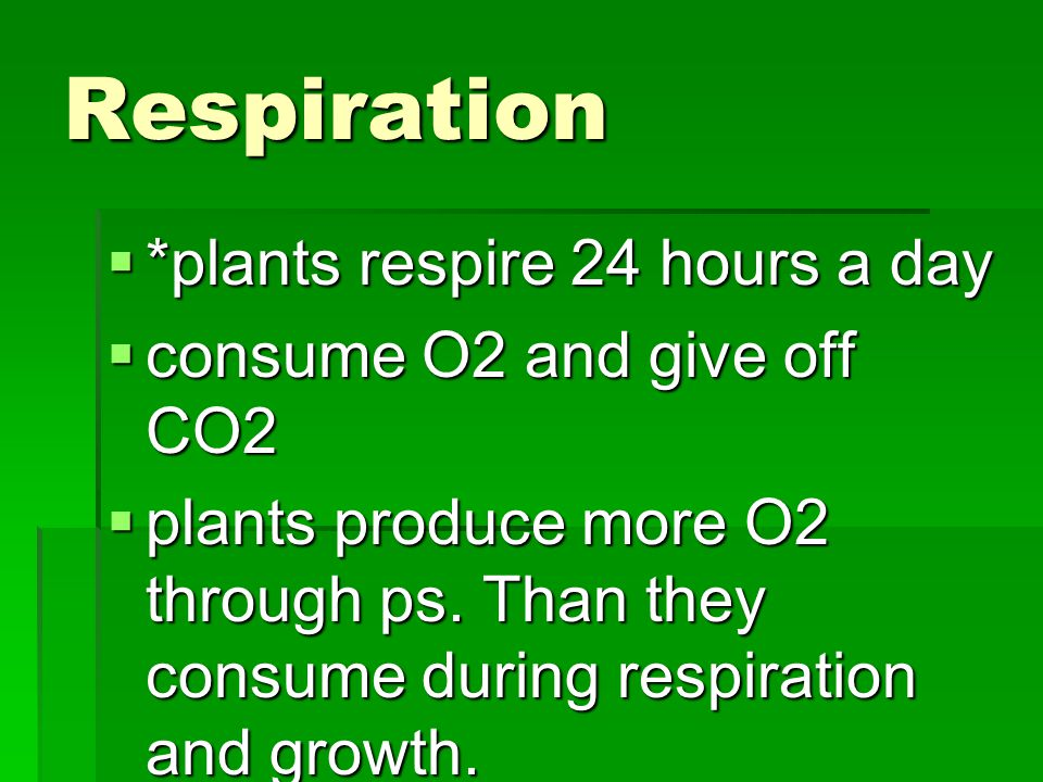 Respiration  *plants respire 24 hours a day  consume O2 and give off CO2  plants produce more O2 through ps.