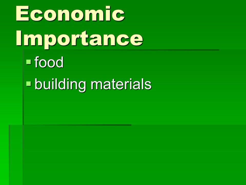 Economic Importance  food  building materials