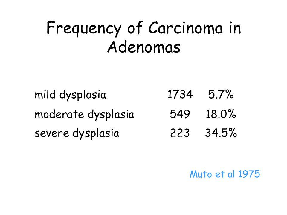 Frequency of Carcinoma in Adenomas mild dysplasia17345.7% moderate dysplasia54918.0% severe dysplasia22334.5% Muto et al 1975
