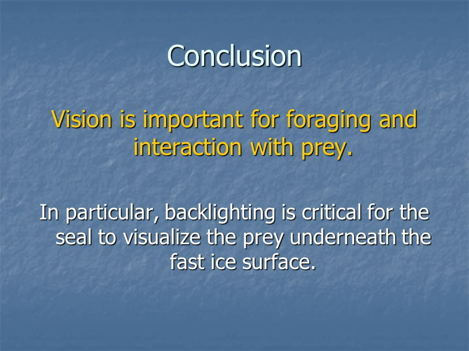Conclusion Vision is important for foraging and interaction with prey.