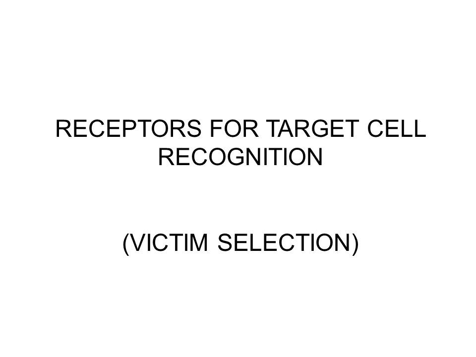 RECEPTORS FOR TARGET CELL RECOGNITION (VICTIM SELECTION)