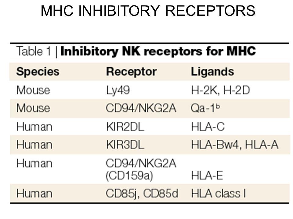 MHC INHIBITORY RECEPTORS