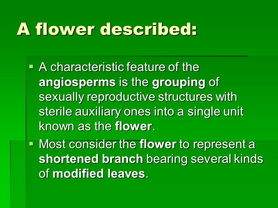 A flower described:  A characteristic feature of the angiosperms is the grouping of sexually reproductive structures with sterile auxiliary ones into a single unit known as the flower.