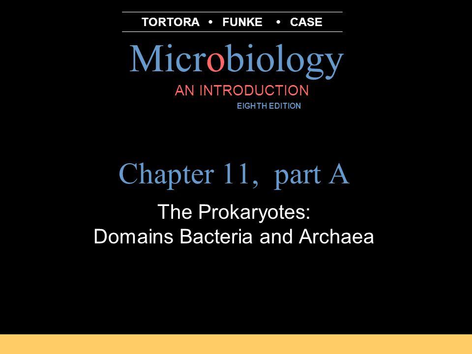 Microbiology B.E Pruitt & Jane J.