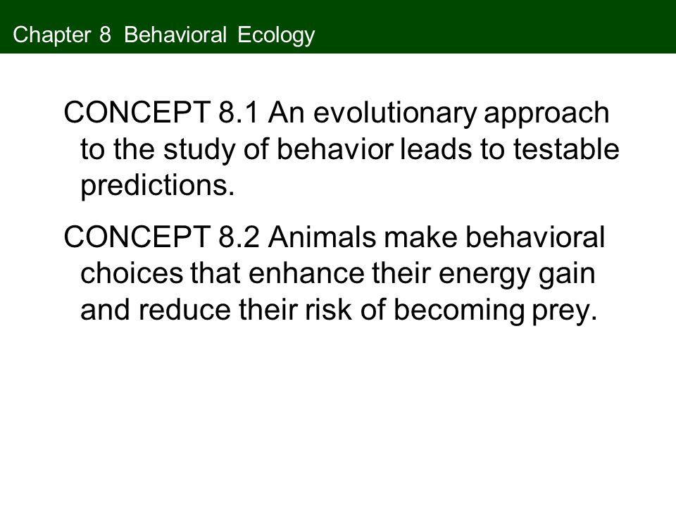 Chapter 8 Behavioral Ecology CONCEPT 8.1 An evolutionary approach to the study of behavior leads to testable predictions. CONCEPT 8.2 Animals make beh