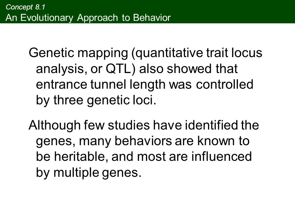 Concept 8.1 An Evolutionary Approach to Behavior Genetic mapping (quantitative trait locus analysis, or QTL) also showed that entrance tunnel length w