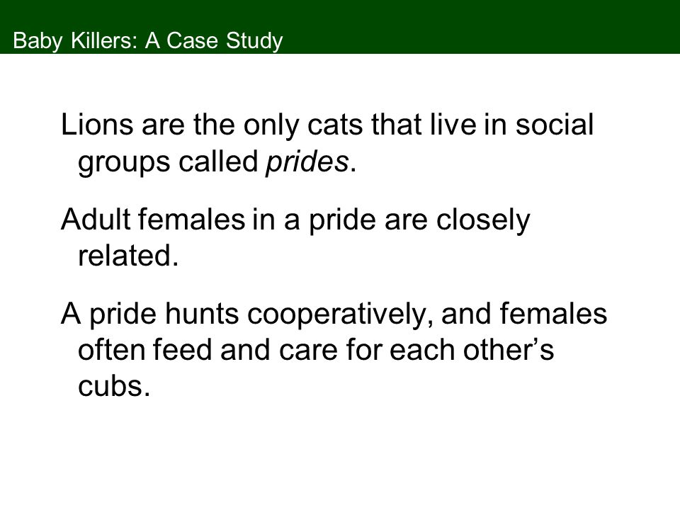 Concept 8.3 Mating Behavior Females may benefit from selecting males with long eyestalks because their male offspring will be attractive to the next generation of females, which supports the sexy son hypothesis.
