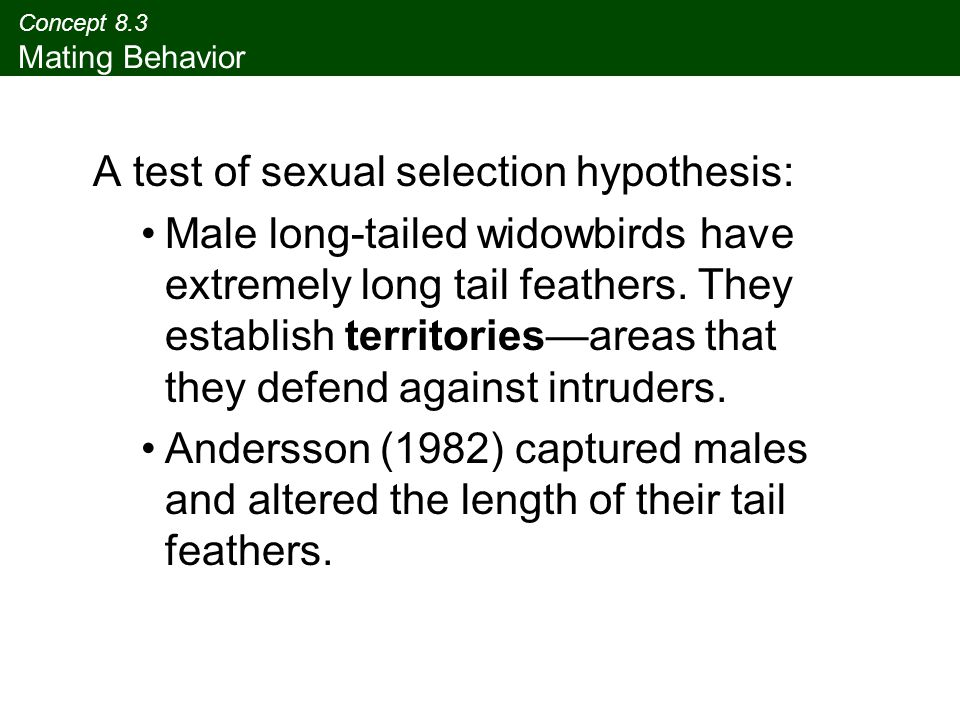 Concept 8.3 Mating Behavior A test of sexual selection hypothesis: Male long-tailed widowbirds have extremely long tail feathers. They establish terri