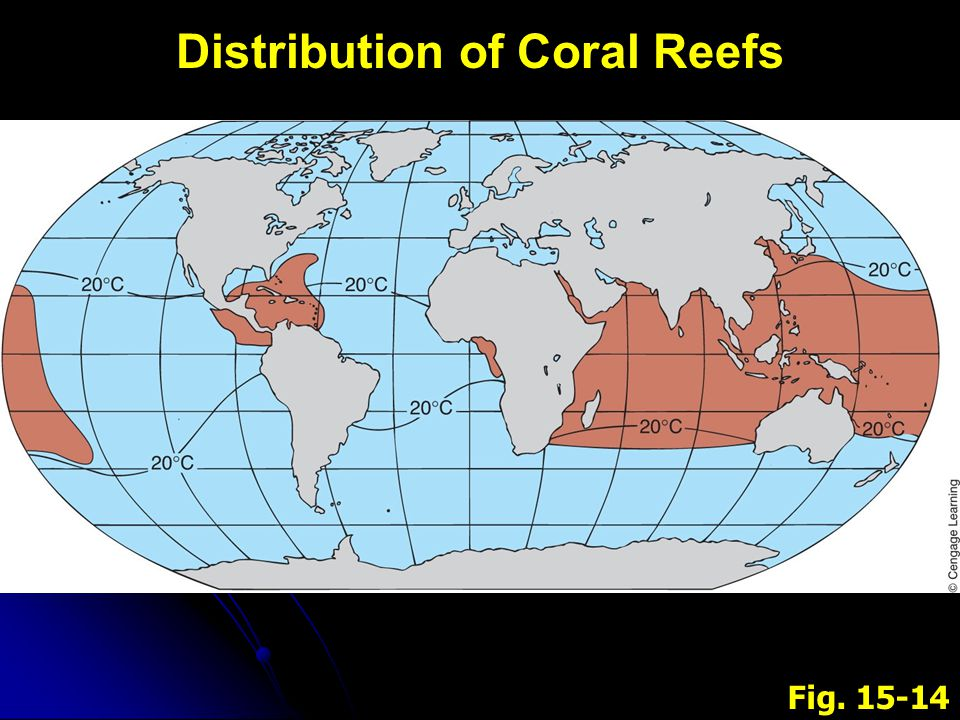 Fig. 15-14 Distribution of Coral Reefs