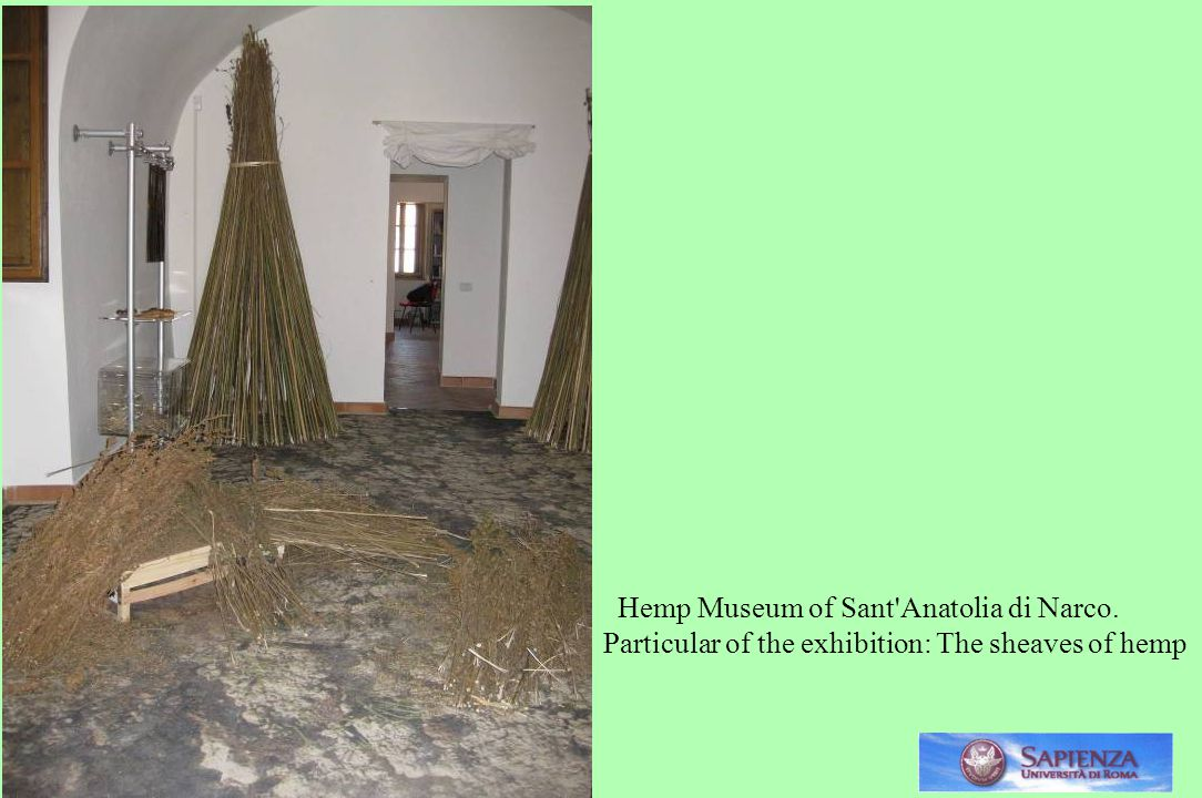 . Hemp Museum of Sant Anatolia di Narco. Particular of the exhibition: The sheaves of hemp