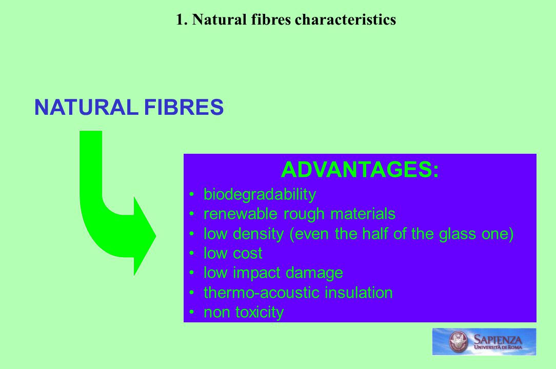 NATURAL FIBRES ADVANTAGES: biodegradability renewable rough materials low density (even the half of the glass one) low cost low impact damage thermo-acoustic insulation non toxicity 1.