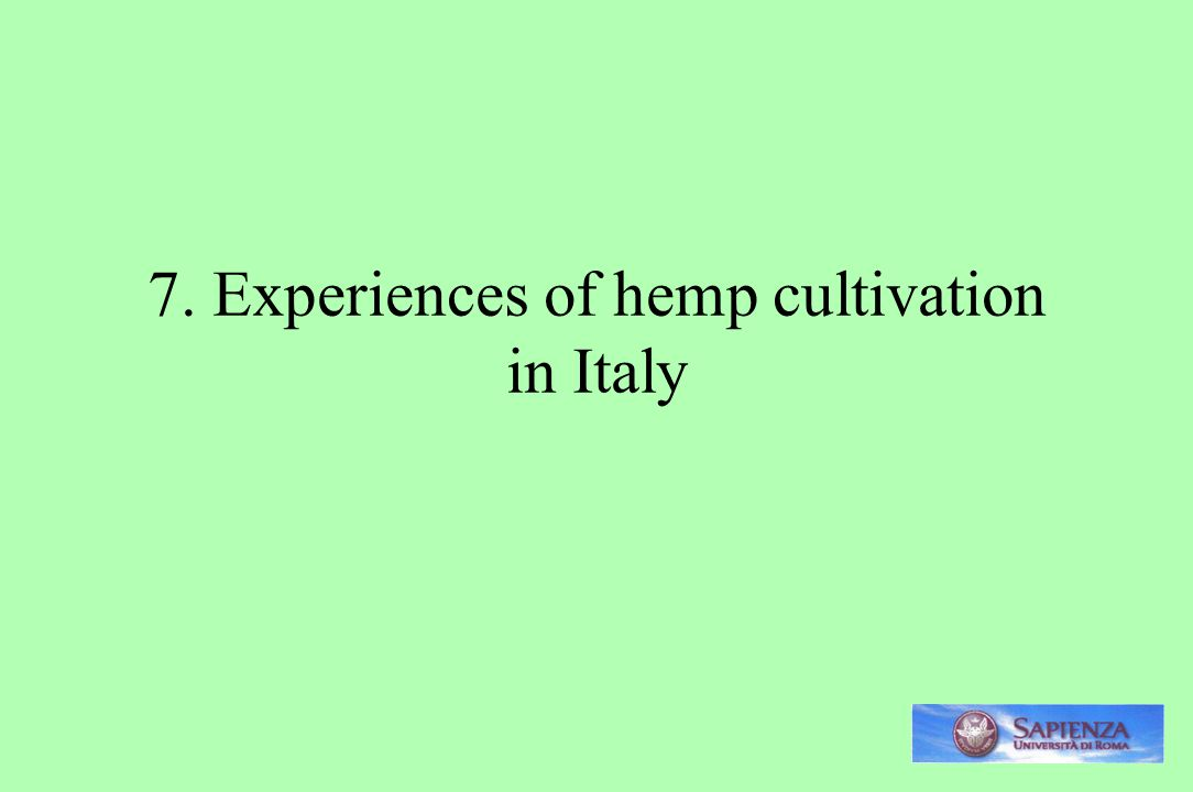 7. Experiences of hemp cultivation in Italy
