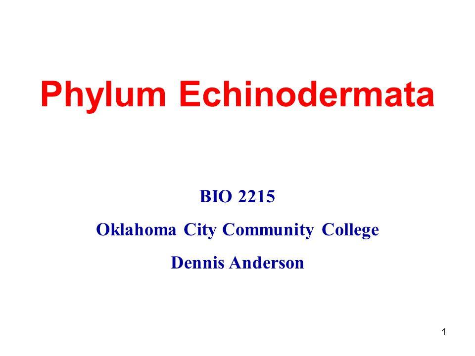 1 Phylum Echinodermata BIO 2215 Oklahoma City Community College Dennis Anderson