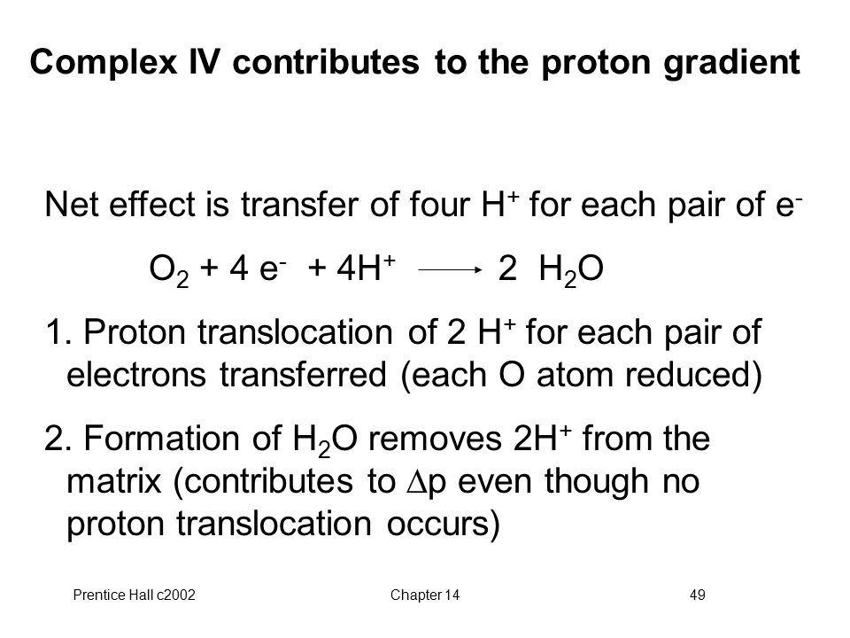 Prentice Hall c2002Chapter 1449 Complex IV contributes to the proton gradient Net effect is transfer of four H + for each pair of e - O 2 + 4 e - + 4H + 2 H 2 O 1.