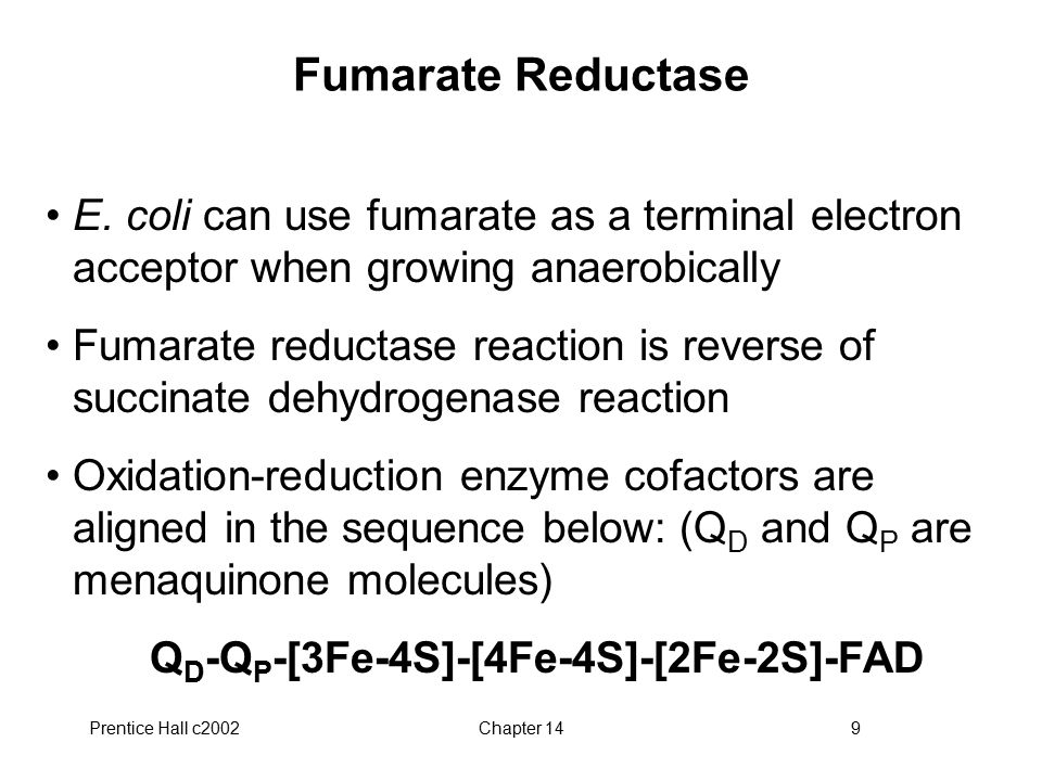 Prentice Hall c2002Chapter 149 Fumarate Reductase E.