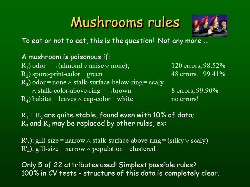 Mushrooms rules To eat or not to eat, this is the question.